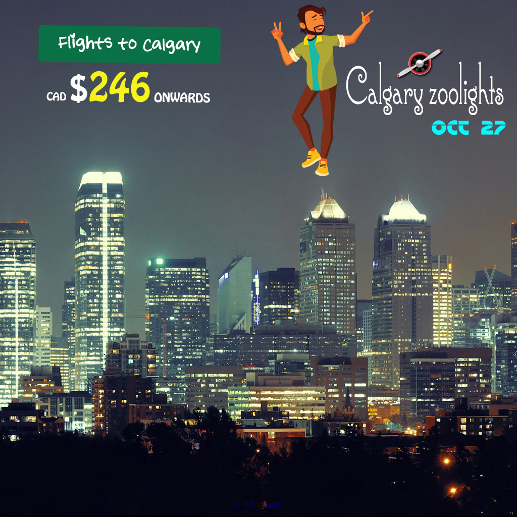 One way Cheap Air Tickets|Ottawa-Calgary | from CAD $246 Onwards ottawa