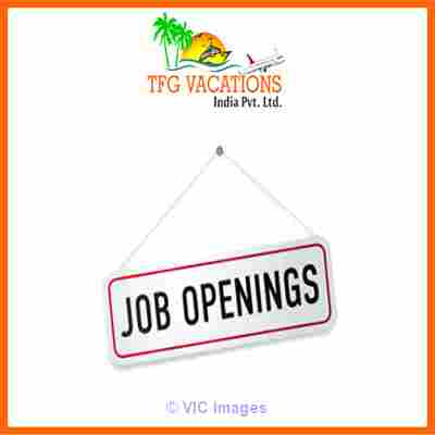 Part time Work Available in a Tours and Travels Company Earn up to 800 ottawa
